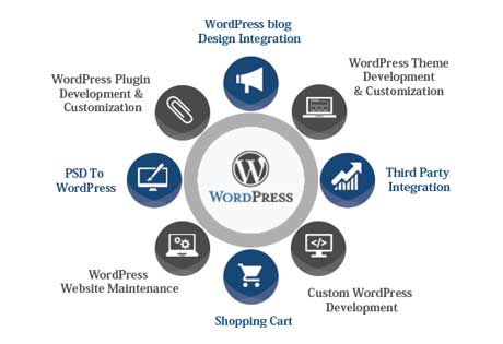 Wordpress Website Design Services in Brisbane