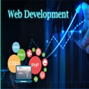 biggest web development companies